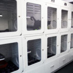 CAT HOSPITALISATION WARD WITH CAT-FRIENDLY KENNELS 01